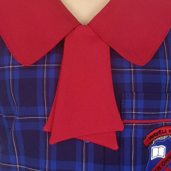 Red Tie Front View